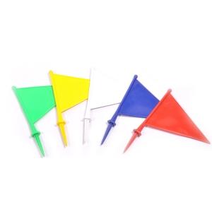 BOUNDARY FLAGS PLASTIC