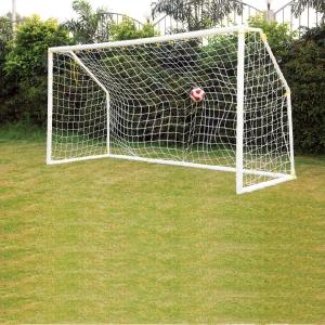 Pro Goal Post   8' x 4'