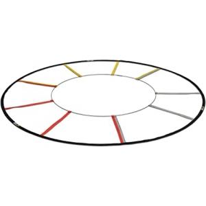 Reactive Agility Ladder